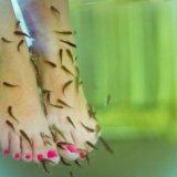 Пилинг рыбками. Фото 1.