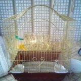 Клетка для птиц. Фото 1. Мытищи.