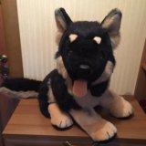 Мягкая игрушка - собака. Фото 1. Москва.
