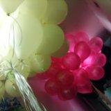 Воздушные шары с доставкой. Фото 2. Москва.