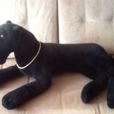Большая черная пантера. Фото 1. Смоленск.