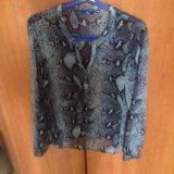 Блузка tom tailor. Фото 1. Москва.