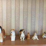 Коллекция фарфоровых собак. Фото 3. Тюмень.