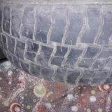 Шины кама пилигрим для уаз. Фото 3. Чебоксары.