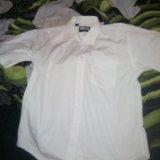 Рубашка на 52 р. Фото 1.