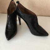 Ботинки carlo pazolini. Фото 1.