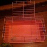 Клетка для грызунов. Фото 2.