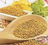 Семена горчицы. Фото 2. Оренбург.