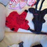 Одежда для маленькой собачки. Фото 2. Химки.