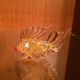 Рыбка. Фото 1.