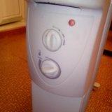 Масляный нагреватель. Фото 1.