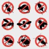 Уничтожение тараканов, клопов, блох и мышей. Фото 1. Барнаул.