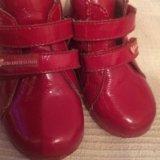 Ботиночки agatha ruiz de la prada. Фото 1.