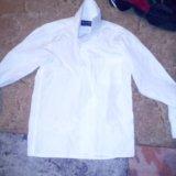 Рубашка и брюки классика. Фото 1.