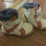 Зимние сапожки универсал. Фото 1.