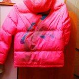 Курточка демисезонная. Фото 2.