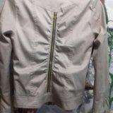 Тонкие курточки пиджачками. Фото 1. Волгоград.