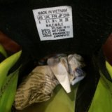 Кроссовки шипованные адидас. Фото 1. Красково.