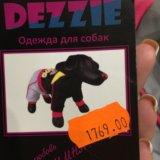 Комбинезон для собак. Фото 3. Мурманск.