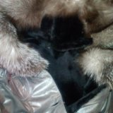 Кожаная дубленка-пальто. Фото 2. Сокур.
