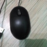 Мышь. Фото 2.