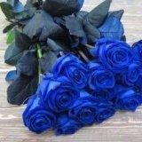 Розы черные,синие,радужные,классика. Фото 2. Москва.