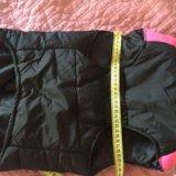 Новая зимняя куртка-жилетка для собак. Фото 3.