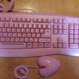 Клавиатура и мышка для блондинок. Фото 1. Челябинск.