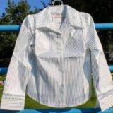 Новая блузка (рубашка), 3 фасона, все размеры. Фото 2. Москва.