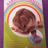 Книга про хомяка(давай дружить хомячок). Фото 1.