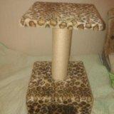 Домик для кошек. Фото 2. Пушкино.