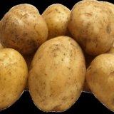 Картофель (сетка). Фото 1.