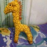 Жирафик. Фото 1.