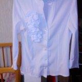 Распродажа...блузка. Фото 1. Оренбург.
