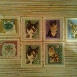Марки болгарии кошки. Фото 1. Владивосток.