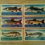 Марки болгарии 1983 рыбы. Фото 1. Владивосток.