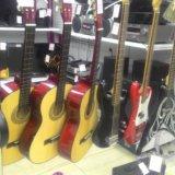 Гитары и гитарки. Фото 1.