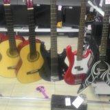 Гитары и гитарки. Фото 2.