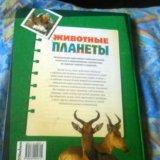 Книга ( живая планета). Фото 2. Дедовск.