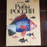 Сабанеев рыбы россии. Фото 1. Москва.