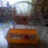 Клетка для попугая. Фото 3.