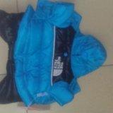 Куртка зимняя для собак. Фото 1.