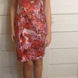 Платье zarina. Фото 4.