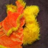 Костюм белка или лиса напрокат карнавальный. Фото 2. Москва.