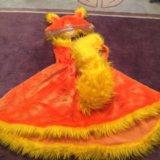 Костюм белка или лиса напрокат карнавальный. Фото 3. Москва.