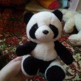 Панда. Фото 1.