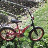 Велосипед детский. Фото 2. Досчатое.