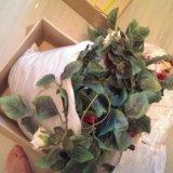Искусственные цветы, лианы. Фото 3.