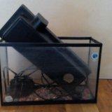 Небольшой аквариум для рыбок !. Фото 1.