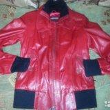 Куртка натуральная кожа. Фото 4.